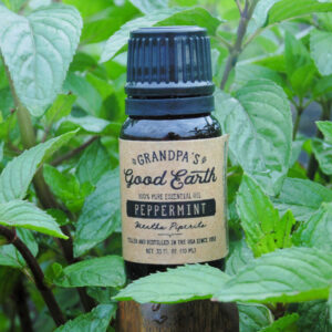 10ml Essential Peppermint Oil Bottle in a Peppermint Field