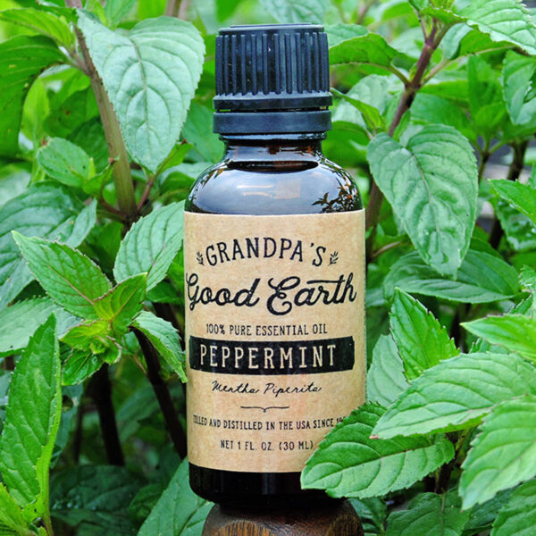 1oz Essential Peppermint Oil Bottle in a Peppermint Field