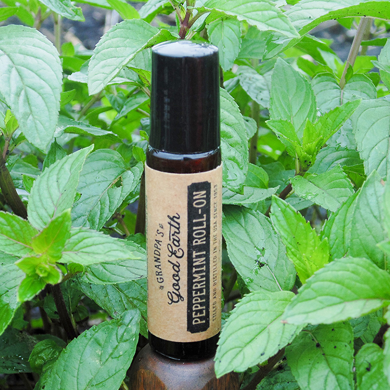10ml Peppermint Essential Oil Roll-On Bottle in Peppermint Field