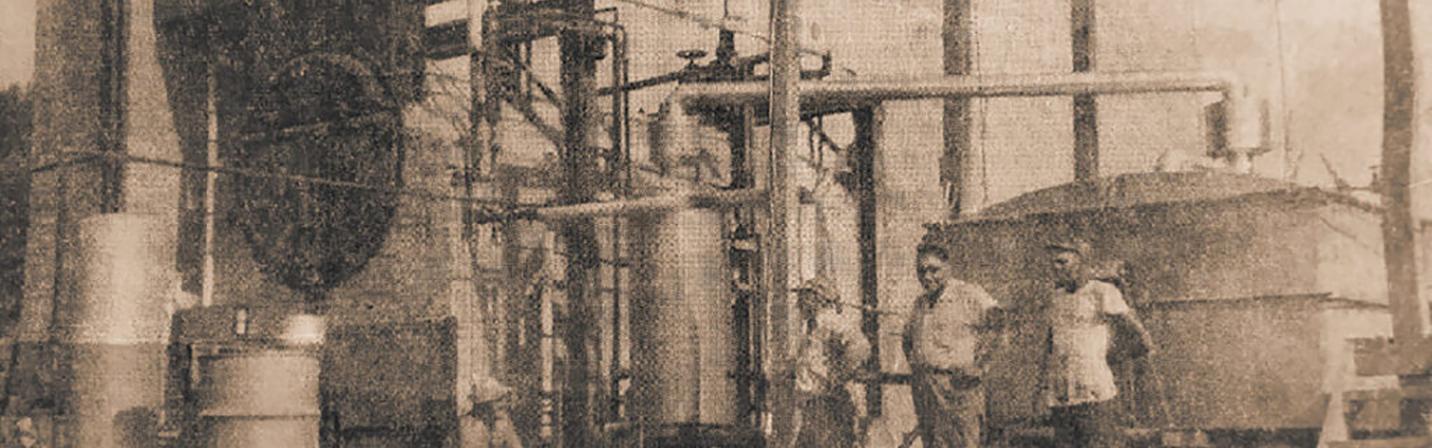 Peppermint Still 1953
